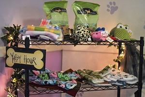pet supplies and products